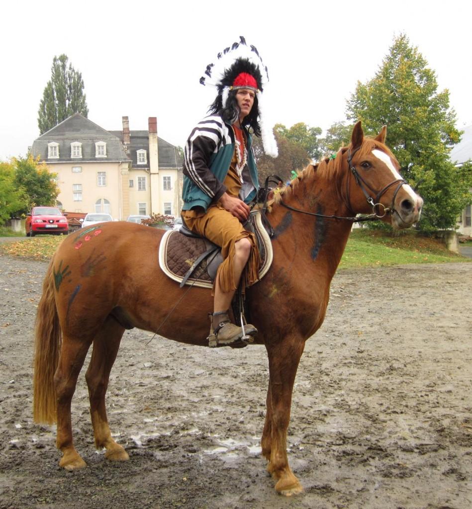 Kürpferd Brandy und Reiter Tobias