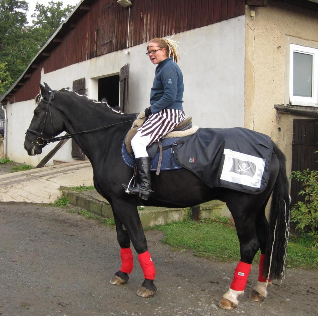 Kürpferd Erlkönig und Reiterin Isabella